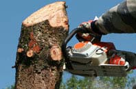 free Ely tree removal quotes
